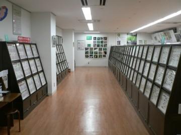 倉敷昆虫館